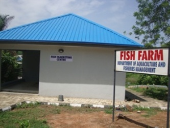 Sales Outlet for Fresh and Processed Fish