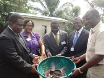 Dr. B.O.Omitoyin and Dr.E.K Ajani presenting fish to the, VC